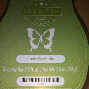 🐞 5 for $25 🐞 Scentsy Wax Bar Lush Gardenia